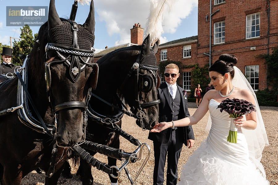 Norwood Park Wedding Horse & Carriage