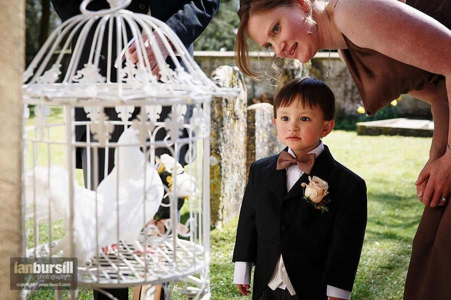 Doves of Love and Pageboy